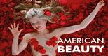Cine Clube | American Beauty